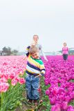 Boy with family in the purple tulips field Royalty Free Stock Images