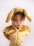 Boy in fancy dress costume. Stock Image