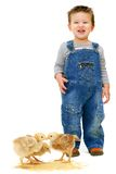 Boy in farm clothes with chickens Stock Photos