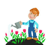 Boy farmer watering tulips Royalty Free Stock Photography