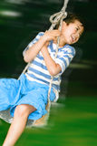 Boy on fast swing. Young boy having fun in the outdoor swing in the garden royalty free stock photography