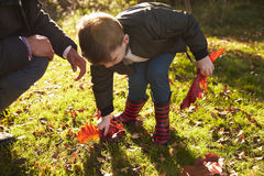 Boy And Father Playing With Autumn Leaves in Garden Stock Photos