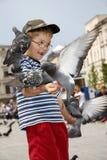 Boy is feeding the birds Stock Photo