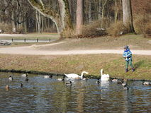 Free Boy Feeding Birds, Lithuania Stock Photo - 68995070