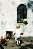 Boy feeding chicken Royalty Free Stock Images