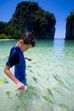 Boy feeding colorful tropical fish Stock Images
