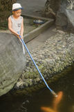 Boy feeding  fish Stock Images