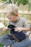 Boy feeding his pet rabbit. Blond youngster and his best friend, playing outdoors and feeding his cute black dwarf rabbit / domestic rabbit with appel, lad stock image