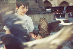 Boy feeding pigeons Stock Photo