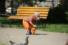 Boy feeding pigeons Stock Photography