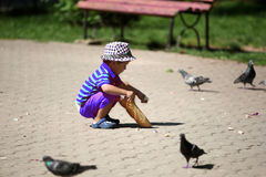 Boy feeding pigeons Royalty Free Stock Photo