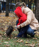 Boy feeds a squirrel. Little boy with mother feeds a squirrel in a park Royalty Free Stock Photography