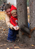 Boy feeds a squirrel. Little boy with mother feeds a squirrel in a park Royalty Free Stock Photos
