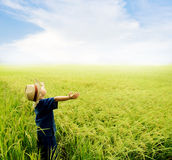 Boy feel good on rice field Royalty Free Stock Images