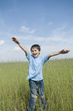 Boy in the field Royalty Free Stock Image