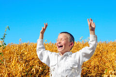 Boy in the field Stock Photography