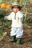 Boy in a Field Royalty Free Stock Images
