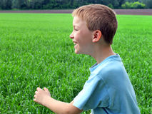 Boy in the field Royalty Free Stock Images