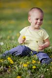 Boy in the field Royalty Free Stock Photography