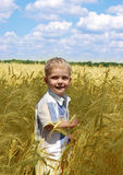 The boy in the field Royalty Free Stock Image