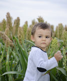 Boy in a field Stock Images