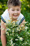 Boy with field daisies Stock Photos