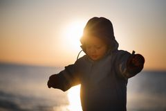 Boy on a field in sunset Royalty Free Stock Image