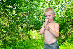 A boy and a fire. Boy kindles a fire in the garden royalty free stock images