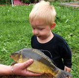 Boy and fish Stock Images