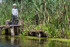 Boy while fishing Stock Photography