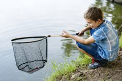 Boy fishing with a net royalty free stock photo