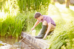 Boy Fishing In Pond With Net And Jar Royalty Free Stock Image