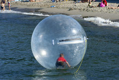 Boy in floating ball. A boy playing inside a floating water walking ball Stock Images