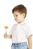 The boy and a flower Royalty Free Stock Images