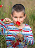 Boy and flower Royalty Free Stock Photo