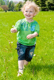 Boy with a flower Stock Photography