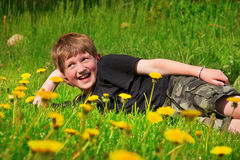 Boy flower meadow Stock Photography