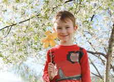 Boy with flower under spring tree Stock Image