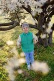Boy in a flowering garden Royalty Free Stock Photo