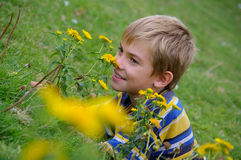 The boy among flowers Stock Image