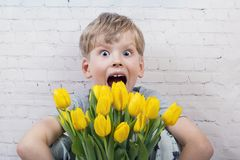 Boy with flowers Royalty Free Stock Images