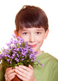 Boy with flowers. Boy with spring flowers in flowerpot Royalty Free Stock Photography