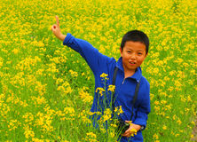 Boy in flowers Royalty Free Stock Photos