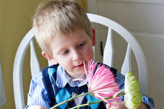 Boy with flowers. Blonde boy looking at pink and green flowers Stock Photography