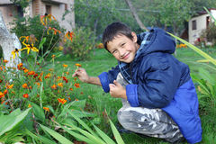 Boy with flowers outdoors Stock Photography
