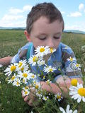 Boy with flowers. Stock Image
