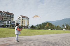 Boy flying kite Stock Photography
