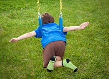 Boy flying on a swing Stock Image