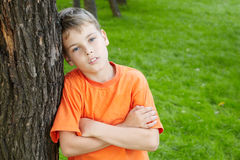 Boy with folded arms, standing leaned to tree Stock Images