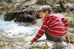 Boy on forest river Stock Photography